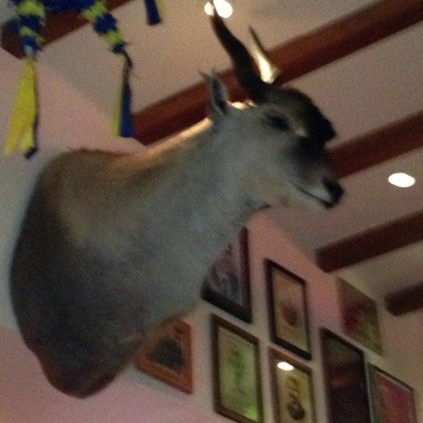 3/26/2013에 Laura G.님이 Hussong's Cantina Las Vegas에서 찍은 사진