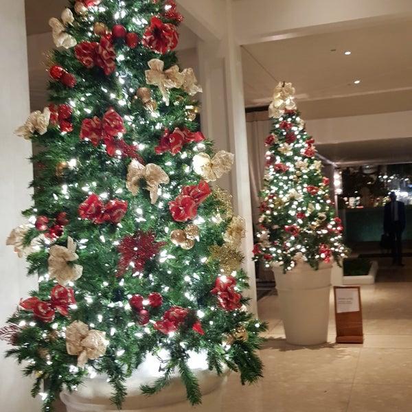 Photos at Halekulani Hotel Hau Terrace