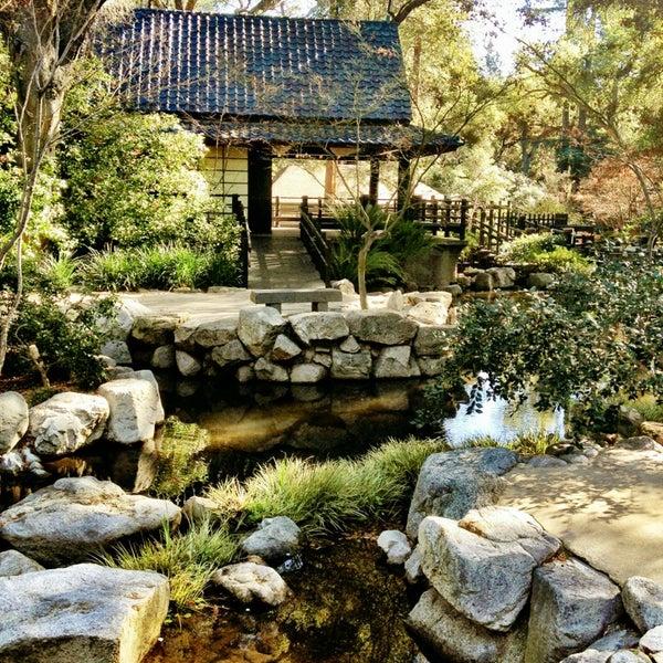 1/18/2013 tarihinde Jerome G.ziyaretçi tarafından Descanso Gardens'de çekilen fotoğraf