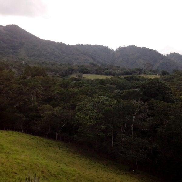 Photos At El Carrizal Field In San Jose De Las Matas