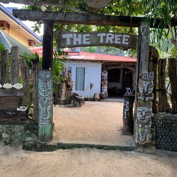 The Tree Sunset Beach 1 Tip