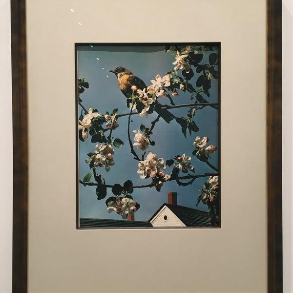 Foto tomada en Bruce Silverstein Gallery por Eva W. el 9/7/2016