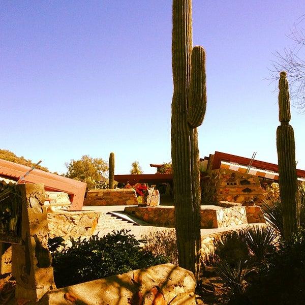 รูปภาพถ่ายที่ Taliesin West โดย Miles B. เมื่อ 1/2/2013