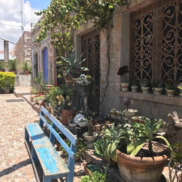 Photos At Galeria San Miguel Patio Decor Fabrica La Aurora