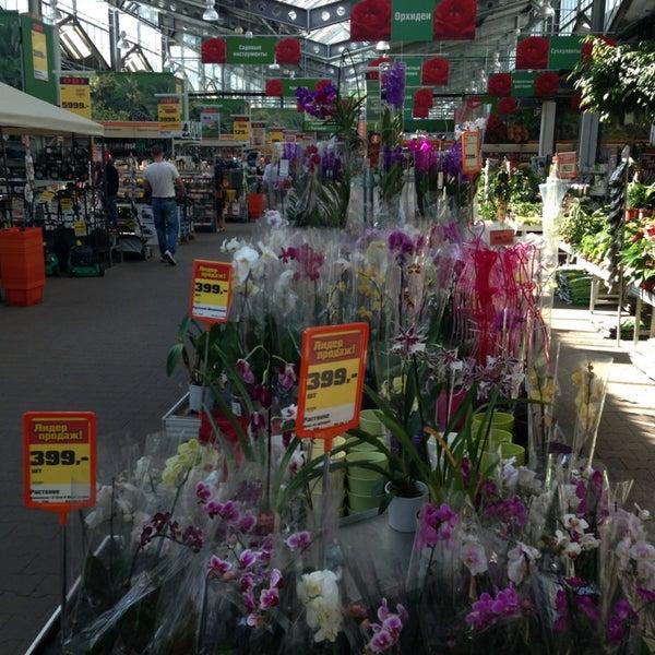 Цветы в магазин оби в спб столешницы