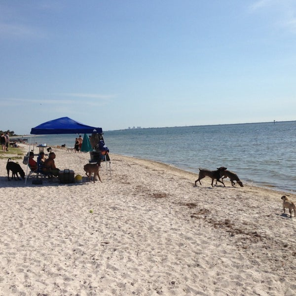 Photo Taken At Picnic Island Beach Dog Park By Tony G On 5 18