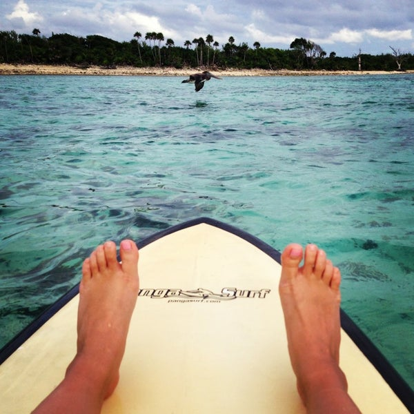Paddle board at sunset and watch the pelicans dive into the water!