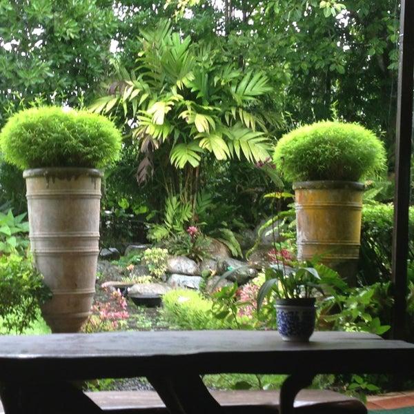 Ming S Garden 8 Tips