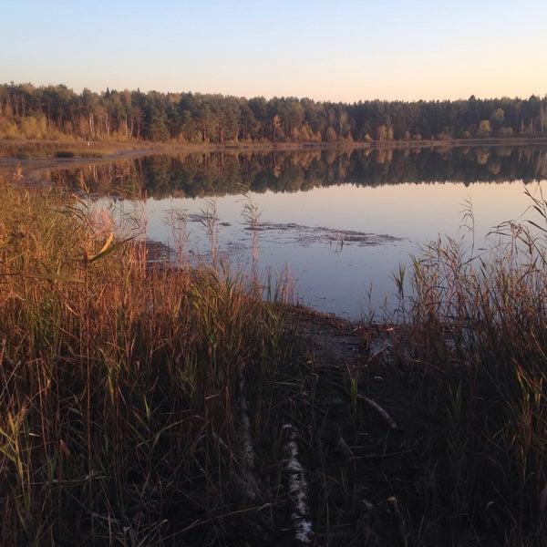 непростую мазуринское озеро старые фото используешь