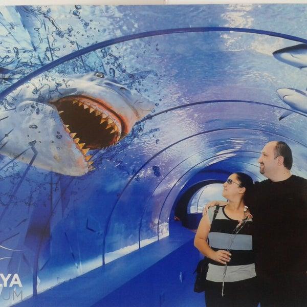 Das Foto wurde bei Antalya Aquarium von Kadir B. am 5/12/2013 aufgenommen