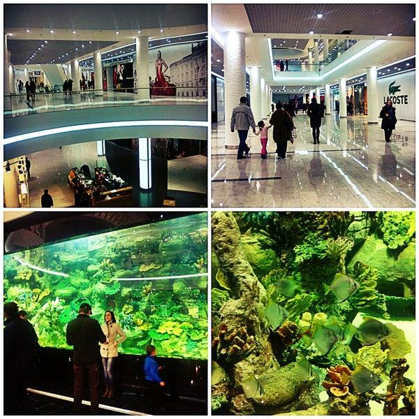 Расслабьтесь, никакого H&M и Starbucks тут не будет :) Сейчас работает 30-40% торговых точек, акула в аквариуме не обнаружена. Светло, просторно, зато кинотеатр есть!
