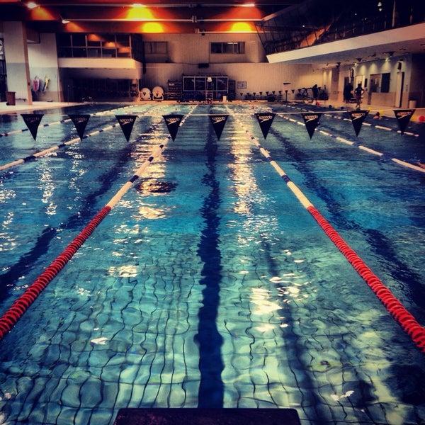 Photos piscine municipale de courbevoie h tel de ville 17 place charles de gaulle - Piscine municipale de courbevoie ...