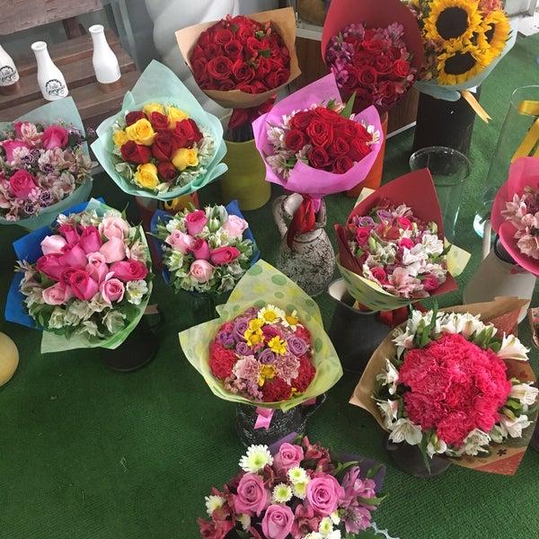 10/4/2017にIris M.がFlorería Flores de Oaxacaで撮った写真
