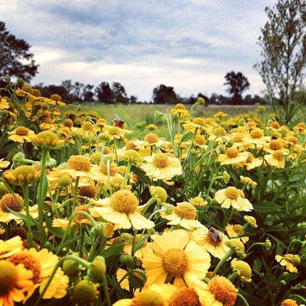 Foto tirada no(a) Duke Farms por Michael D. em 8/18/2013