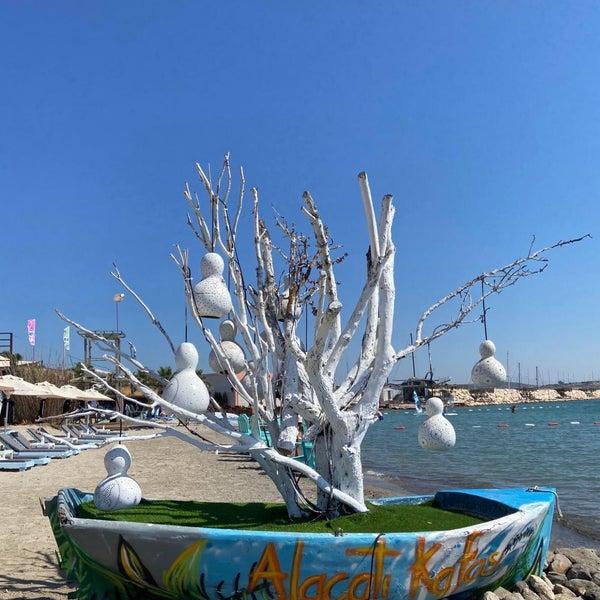 7/12/2020에 Nuran U.님이 Alaçatı Surf Paradise Club에서 찍은 사진
