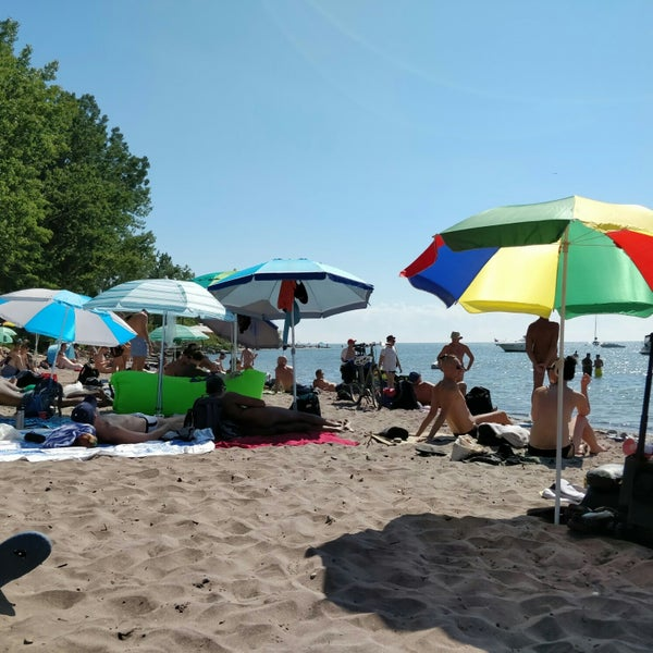 Island Beach People: Photos At Hanlan's Point Beach