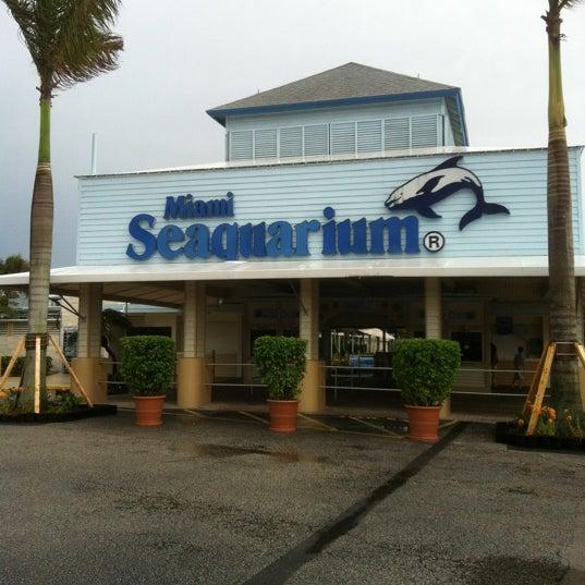 Foto scattata a Miami Seaquarium da Fernandez Y. il 4/21/2012