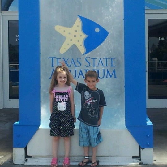 7/6/2012にSarah N Daniel S.がTexas State Aquariumで撮った写真