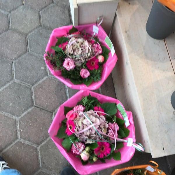 photos at tuincentrum de mooij - rijnsburg, zuid-holland