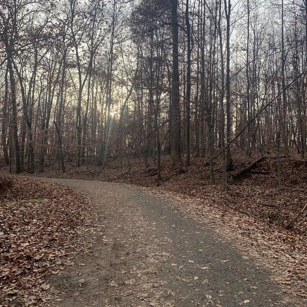 Foto scattata a Anne Springs Close Greenway da Rachel A. il 12/28/2019