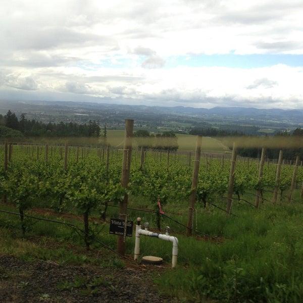 Photo prise au Winter's Hill Estate Vineyard & Winery par Umi Hashitsume F. le5/13/2013