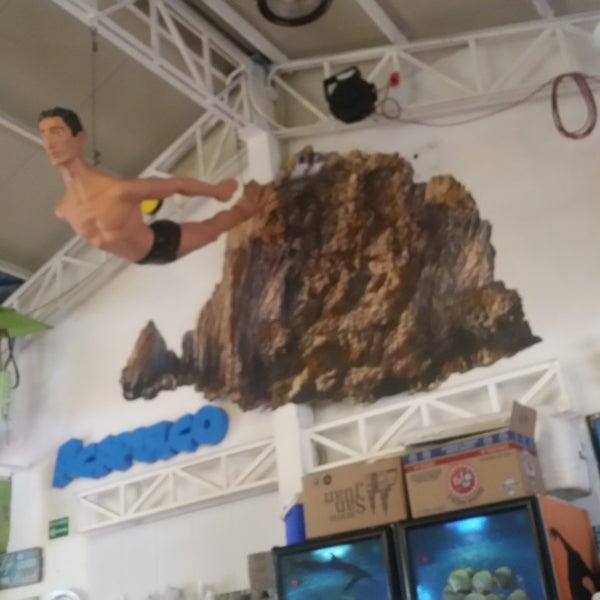 Es el mejor lugar para comer en Acapulco! El agua chile, los camarones al coco, los tacos de pescado al pastor! Las tiritas de pescado.. que delicia