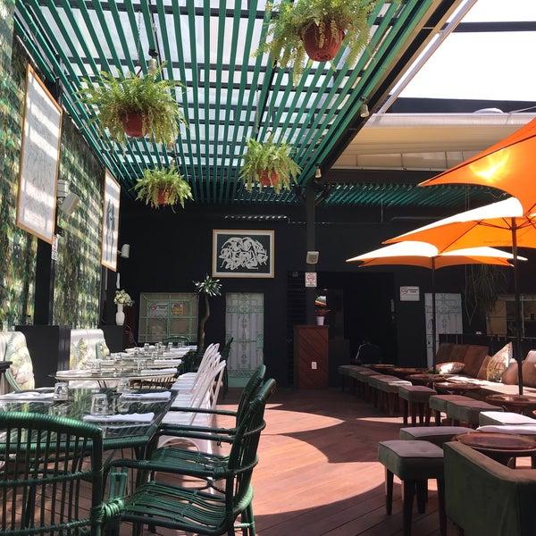 Photos At Hotel Casa Awolly Roma Norte Ciudad De México