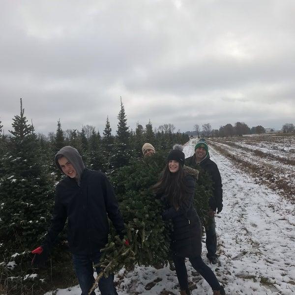- Guse Christmas Tree Farm - Farm In Wanatah