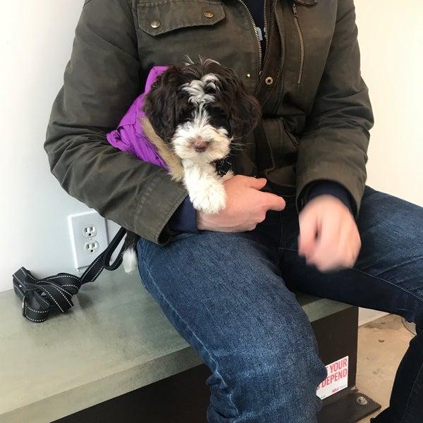 Brooklyn Roots Veterinary Gowanus 319 3rd Ave
