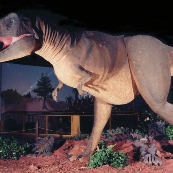 Foto tirada no(a) Las Vegas Natural History Museum por Las Vegas Natural History Museum em 8/11/2013