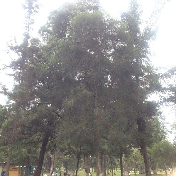 Foto diambil di Parque El Ejido oleh Maria Rossana H. pada 11/14/2016