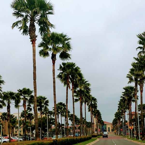 The Palms Crossing Shopping Center