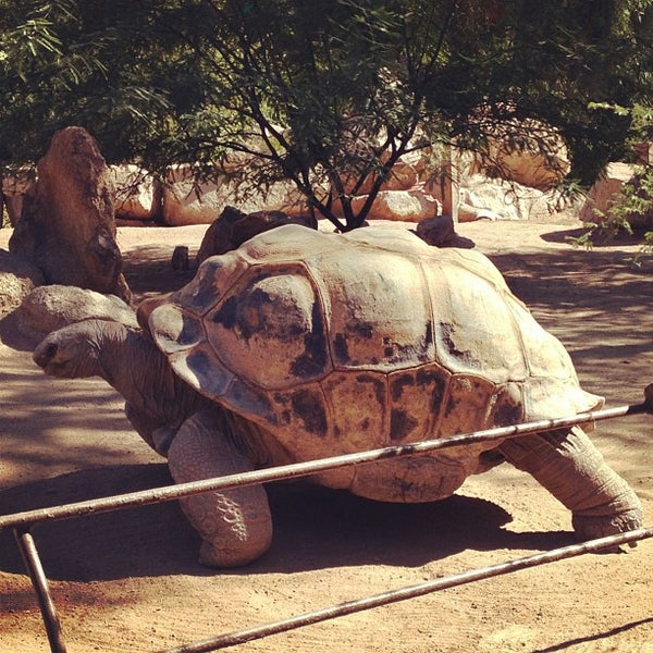 Foto tomada en Phoenix Zoo por Lauren G. el 11/2/2012
