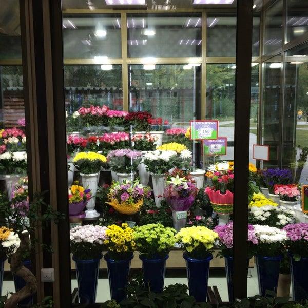 Крона сайт магазин цветов красноярск, заказ твери