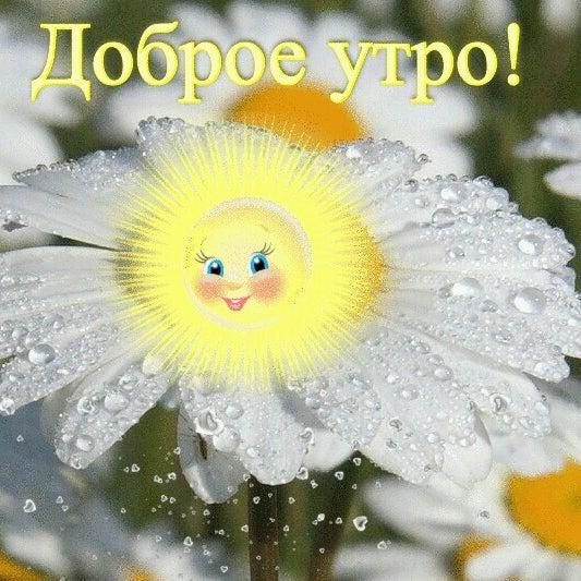 Веселые, открытки солнечного настроения в дождливую погоду