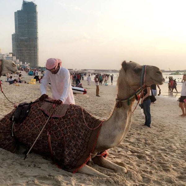 Camel ride on the beach.