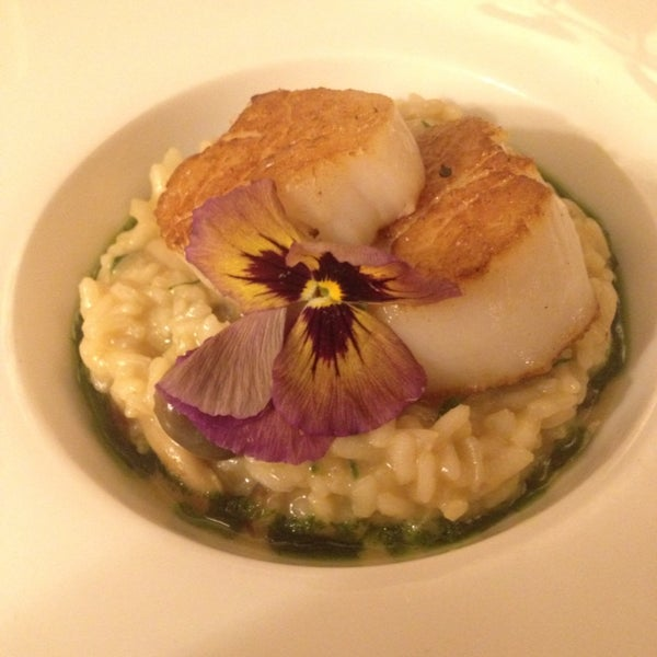 Risotto with wild mushrooms and sea scallops