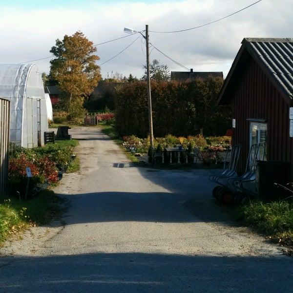 vestby planteskole