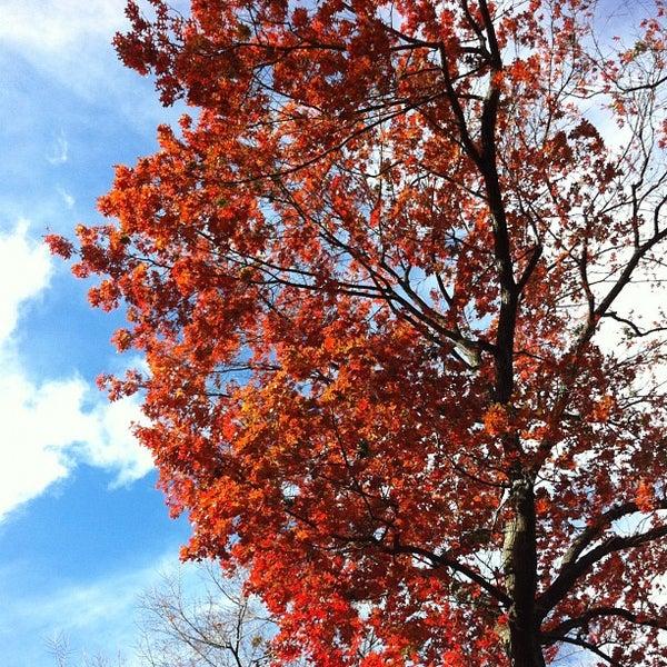 Foto scattata a Conservatory Garden da Alex E. il 11/30/2012