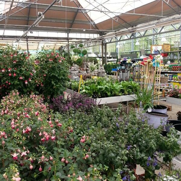 photos at tuincentrum ockenburgh - garden center in den haag