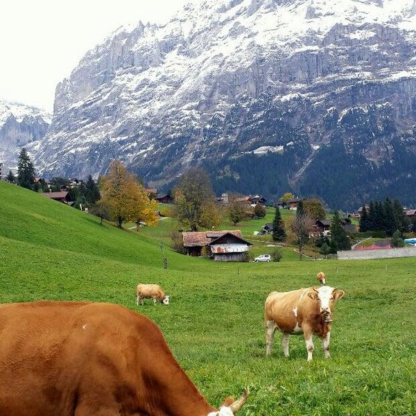 Photos at Grindelwald, Switzerland - Kreis 5 - Zürich, Zürich