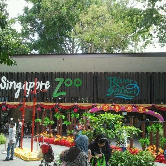 Foto tirada no(a) Singapore Zoo por alan wang k. em 2/11/2013