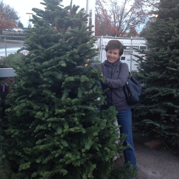 Blossom Hill Christmas Tree Lot