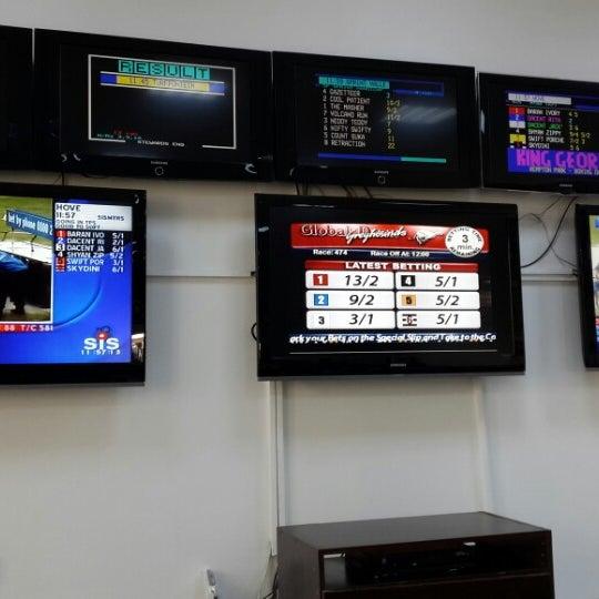 Action global nicosia betting elusive kate 1000 guineas betting