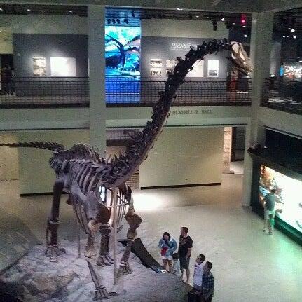 Foto scattata a Houston Museum of Natural Science da Lexi E. il 9/30/2012