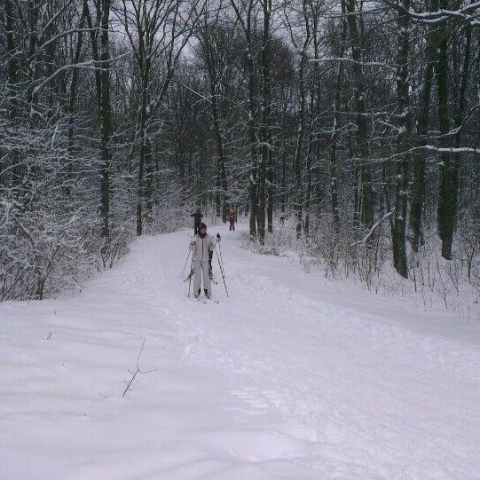 лыжная база сосенка в корытово фото широкой части сосуда