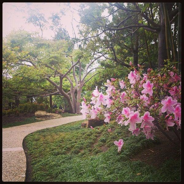 4/16/2013にAlan B.がJapanese Friendship Gardenで撮った写真