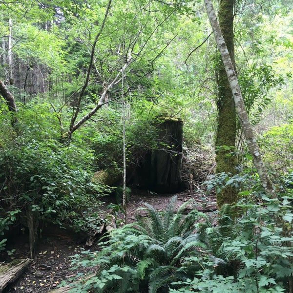 Photos at East Sooke Regional Park Old Copper Mine - Sooke, BC