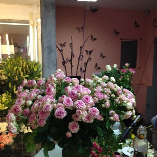 Цветы сургут купить цветы в санкт-петербурге ул. маяковская букет роз хризантем