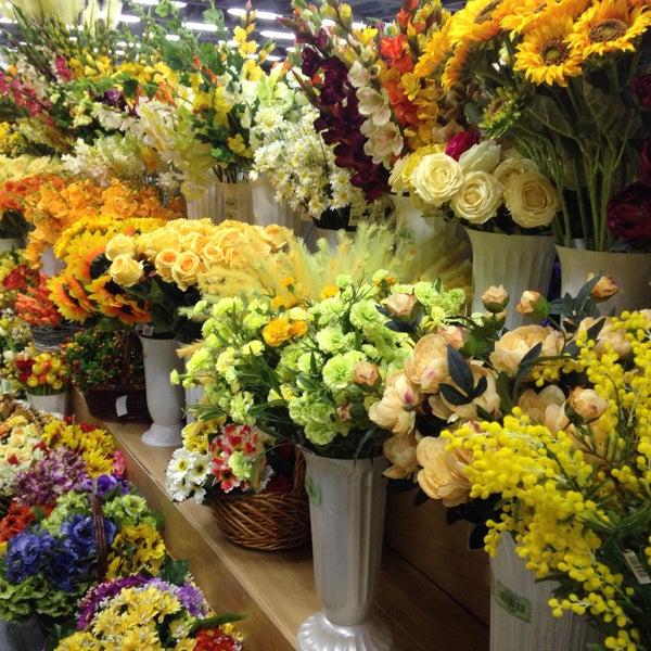 Оптовый склад цветов на пулковском шоссе камелия каталог, золотые гвоздики